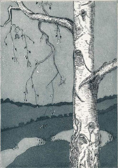 Rotraut Kramer: Landschaft mit Birke, 2008, Strichätzung und Aquatinta